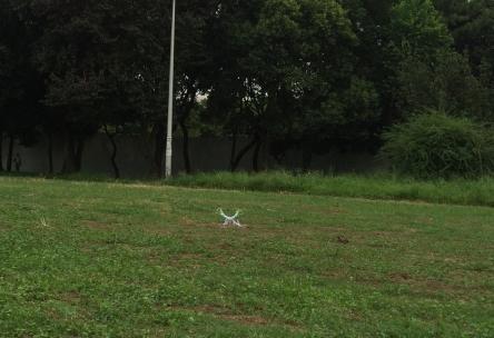 ドローン墜落